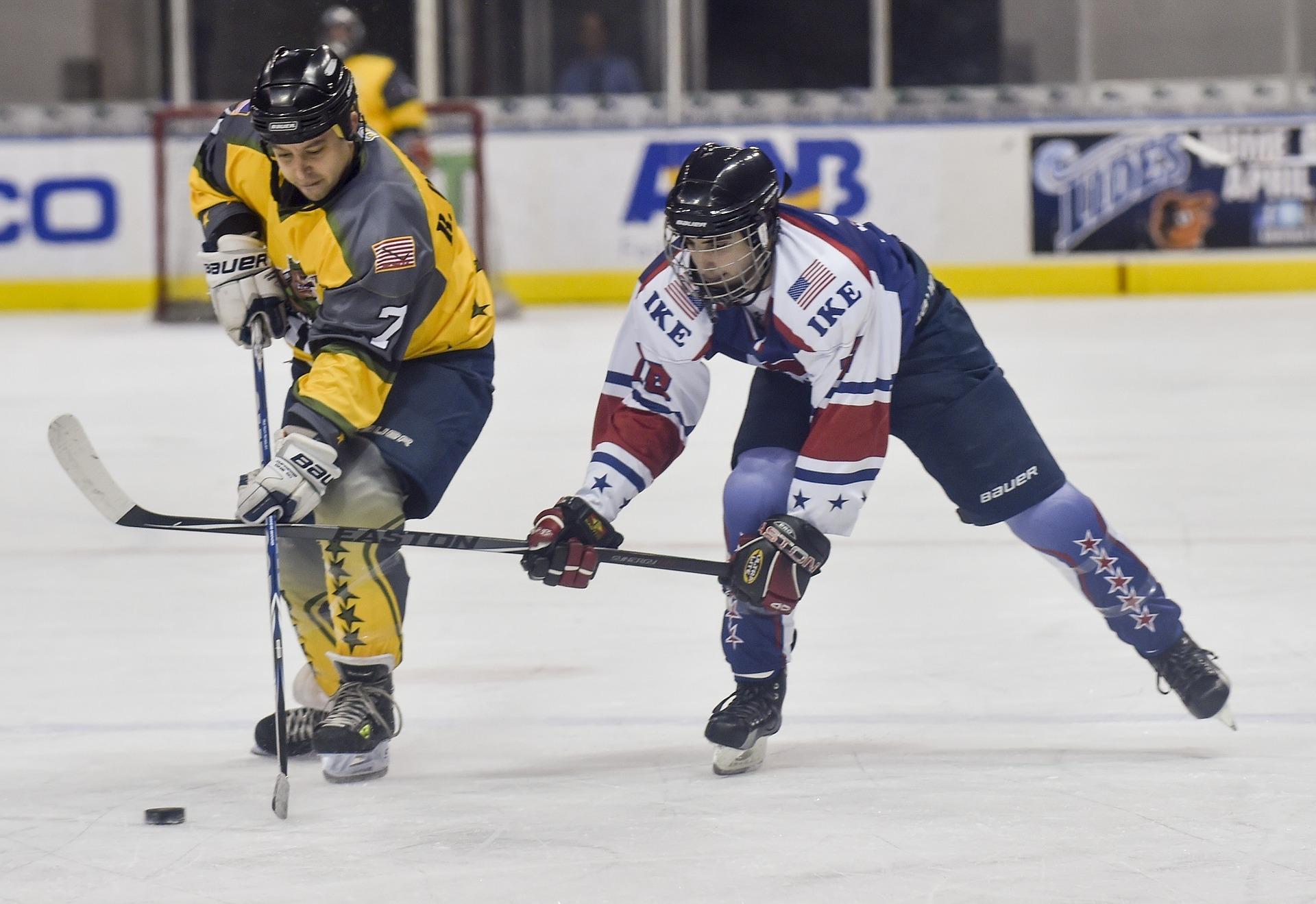 Pixabay_ice-hockey-870347_1920_Eishockey